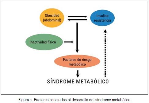Síndrome metabólico: concepto y aplicación práctica