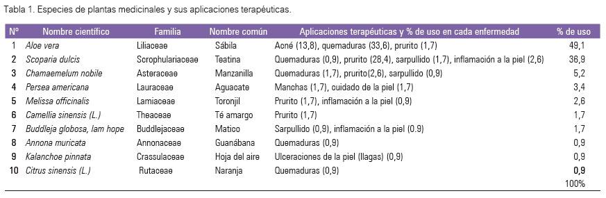 manual de terapias naturales para cada enfermedad spanish edition