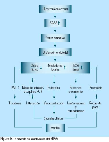 acido urico aves y reptiles acido urico en el metabolismo acido urico en que alimentos se encuentra