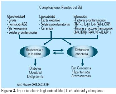 Pautas de 9 pasos para Hipertensión esencial