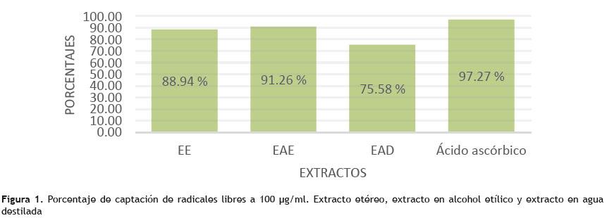 hierbas medicinales para curar acido urico acido urico bajo que funcion tiene el acido urico en nuestro cuerpo