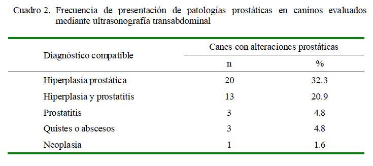 prostatitis en perros tratamiento pdf