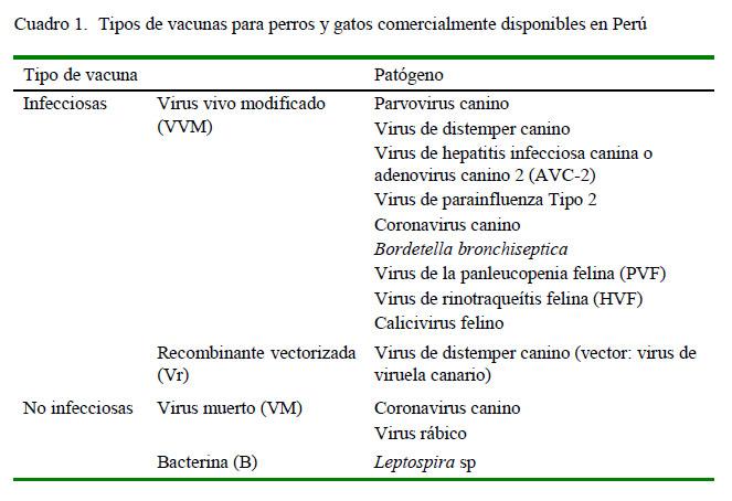 Vacunas Gatos Calendario.Guias Para La Vacunacion De Perros Caninos Y Gatos