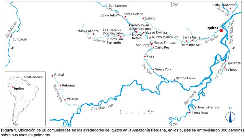 Image Result For Peru V S